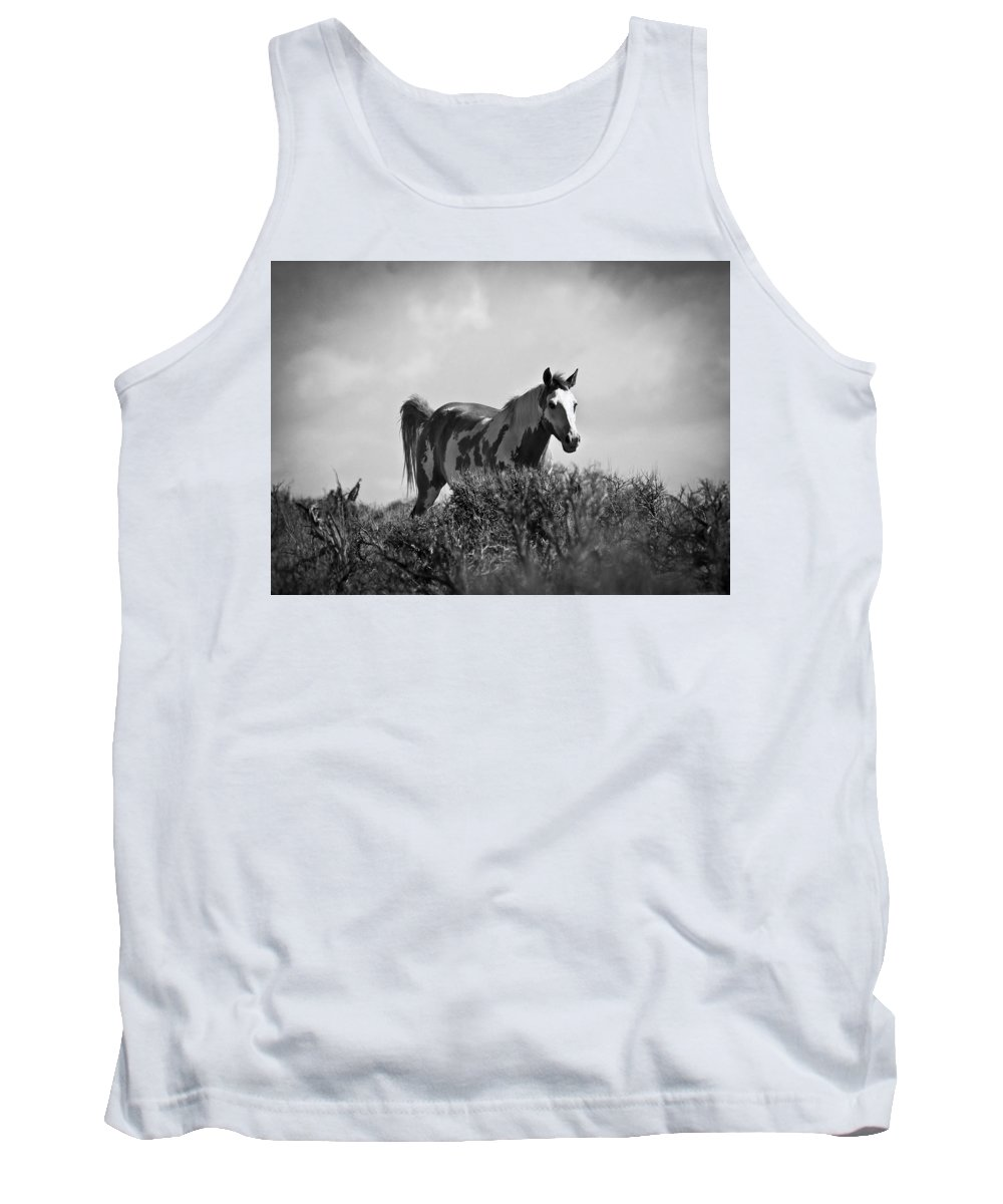 Oregon Wild Horses Tank Top featuring the photograph Wild Horse by Steve McKinzie