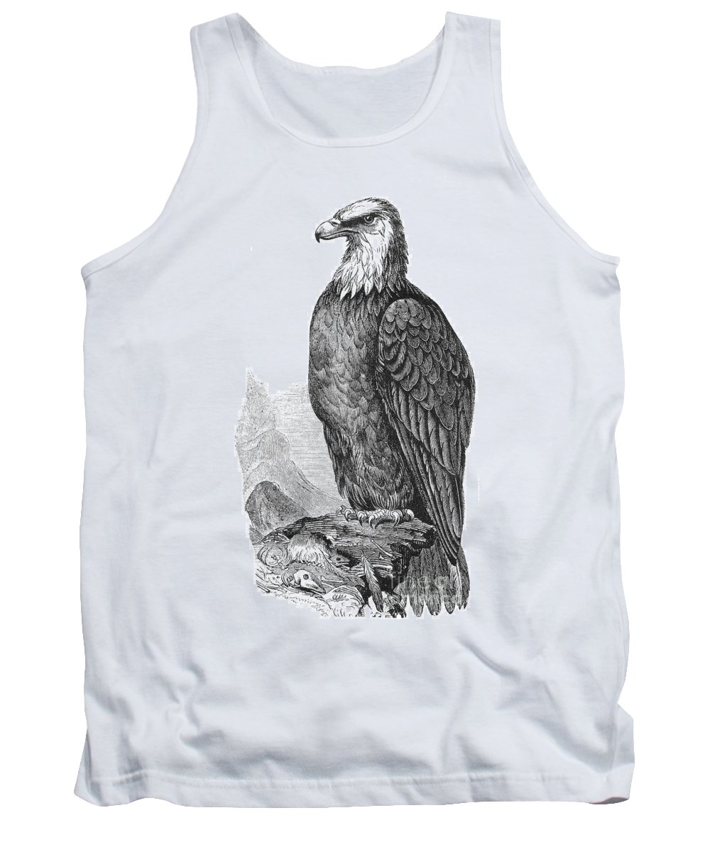 19th Century Tank Top featuring the photograph Bald Eagle by Granger