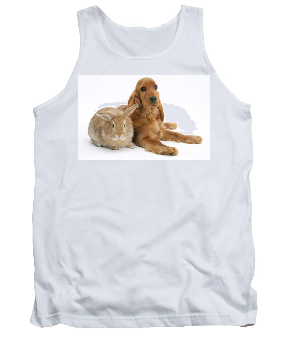 Animal Tank Top featuring the photograph Cocker Spaniel And Rabbit by Mark Taylor