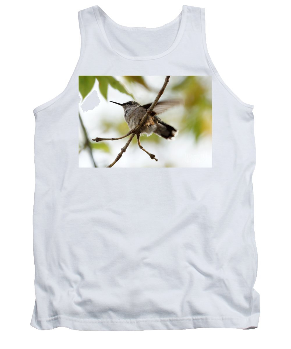 Birds Tank Top featuring the photograph Hummingbird by Lori Tordsen