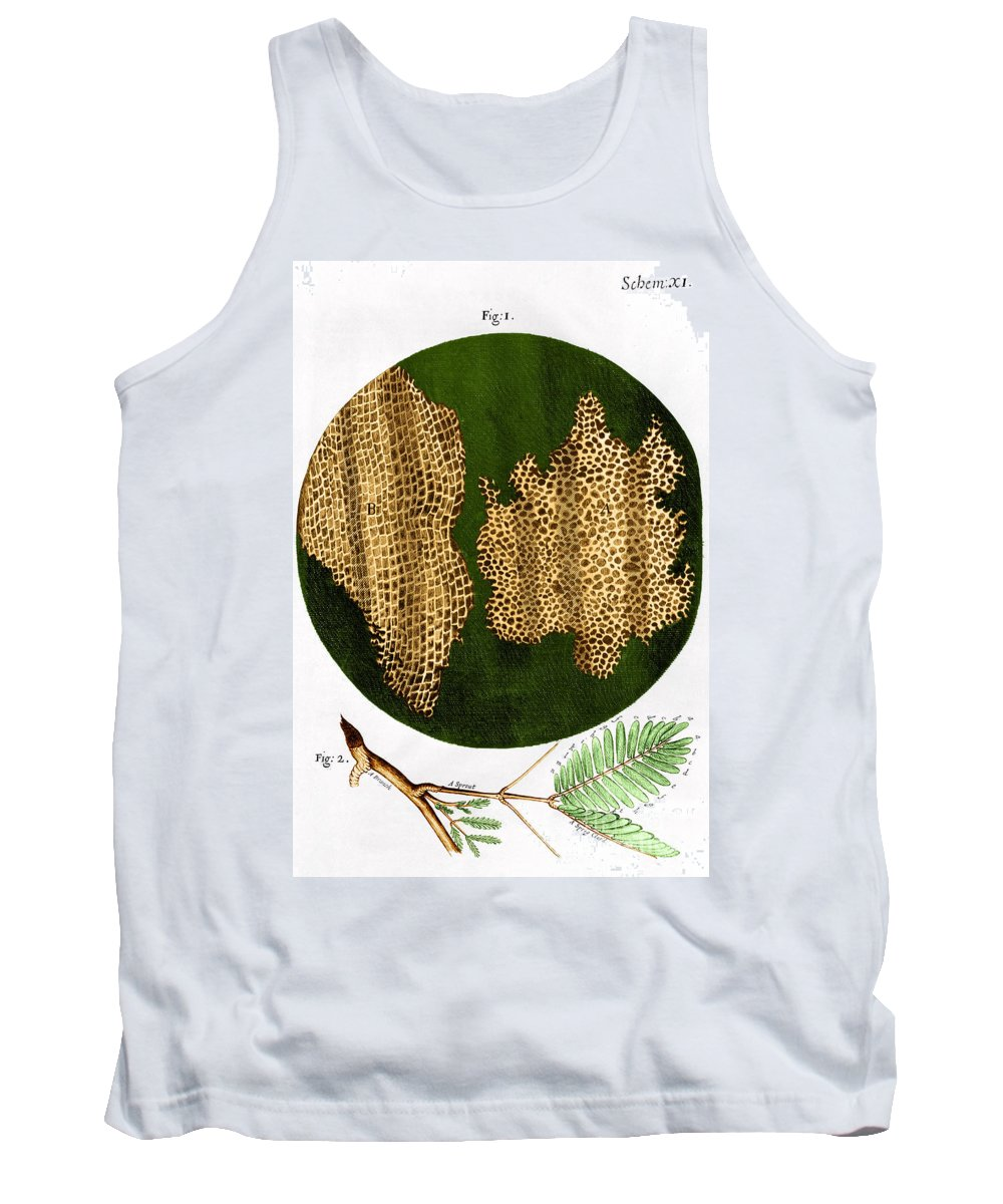 Illustration Tank Top featuring the photograph Illustration Of Cork Wood Cells by Omikron