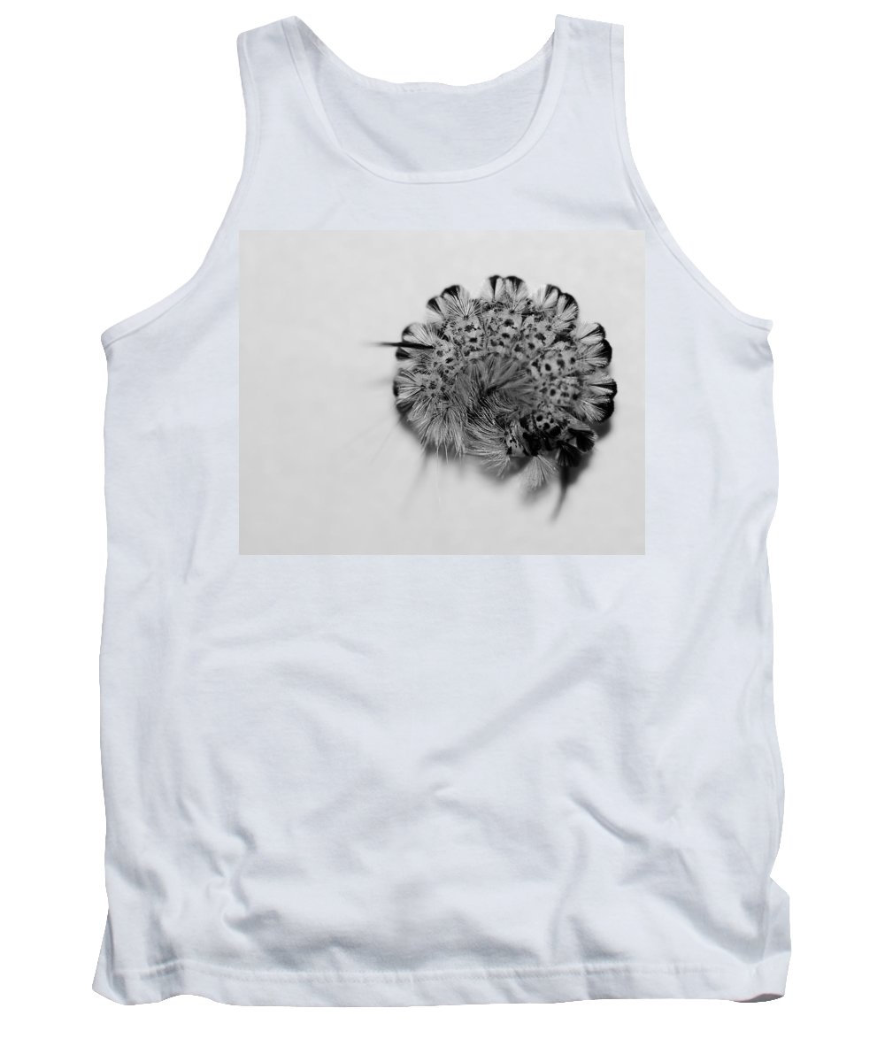 Nature Tank Top featuring the photograph All Coiled Up by Susan Capuano