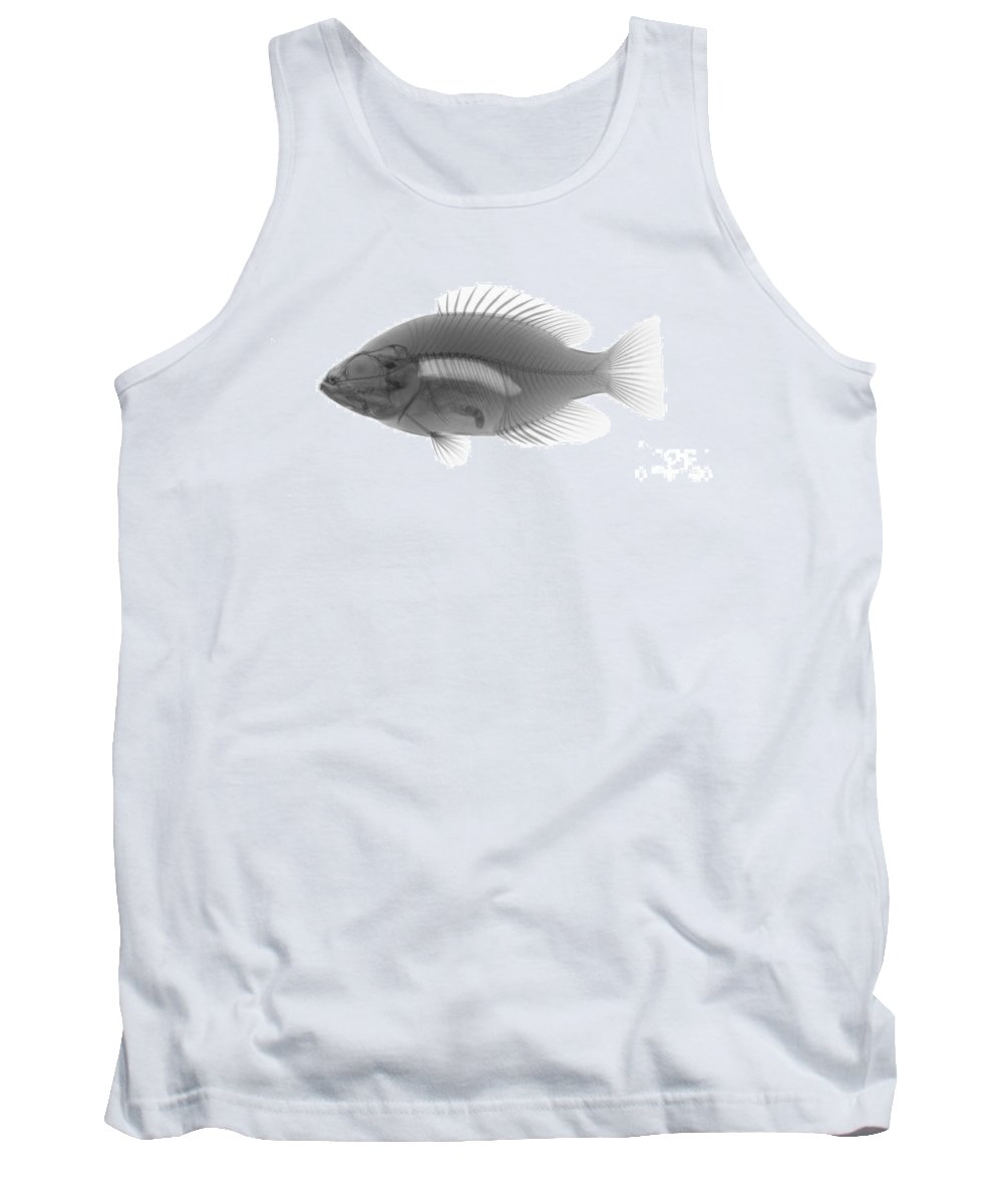 Xray Tank Top featuring the photograph An X-ray Of A Rockbass by Ted Kinsman