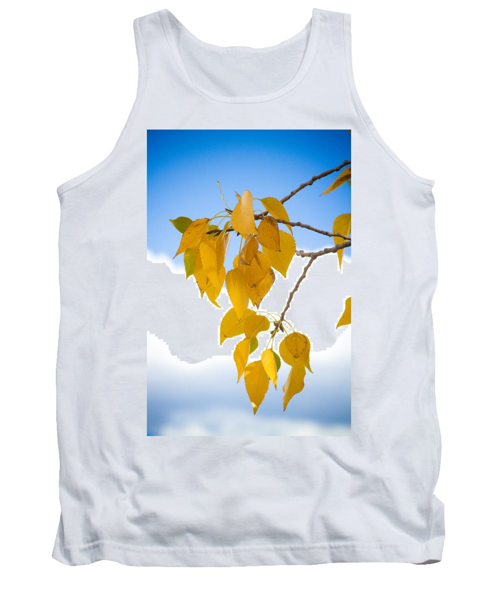 Autumn Tank Top featuring the photograph Autumn Aspen Leaves by James BO Insogna