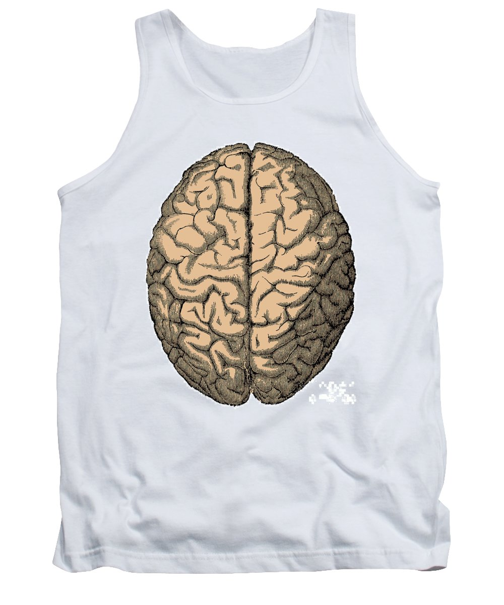 Brain Tank Top featuring the photograph Brain by Science Source