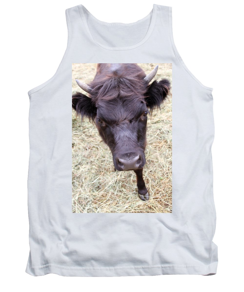Animal Tank Top featuring the photograph Don't Mess With Me by Karol Livote