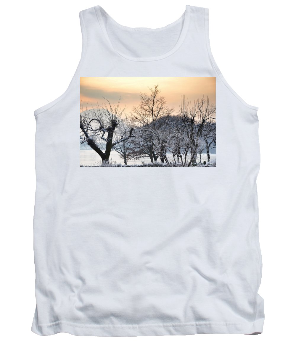 Frozen Tank Top featuring the photograph Frozen Trees by Mats Silvan