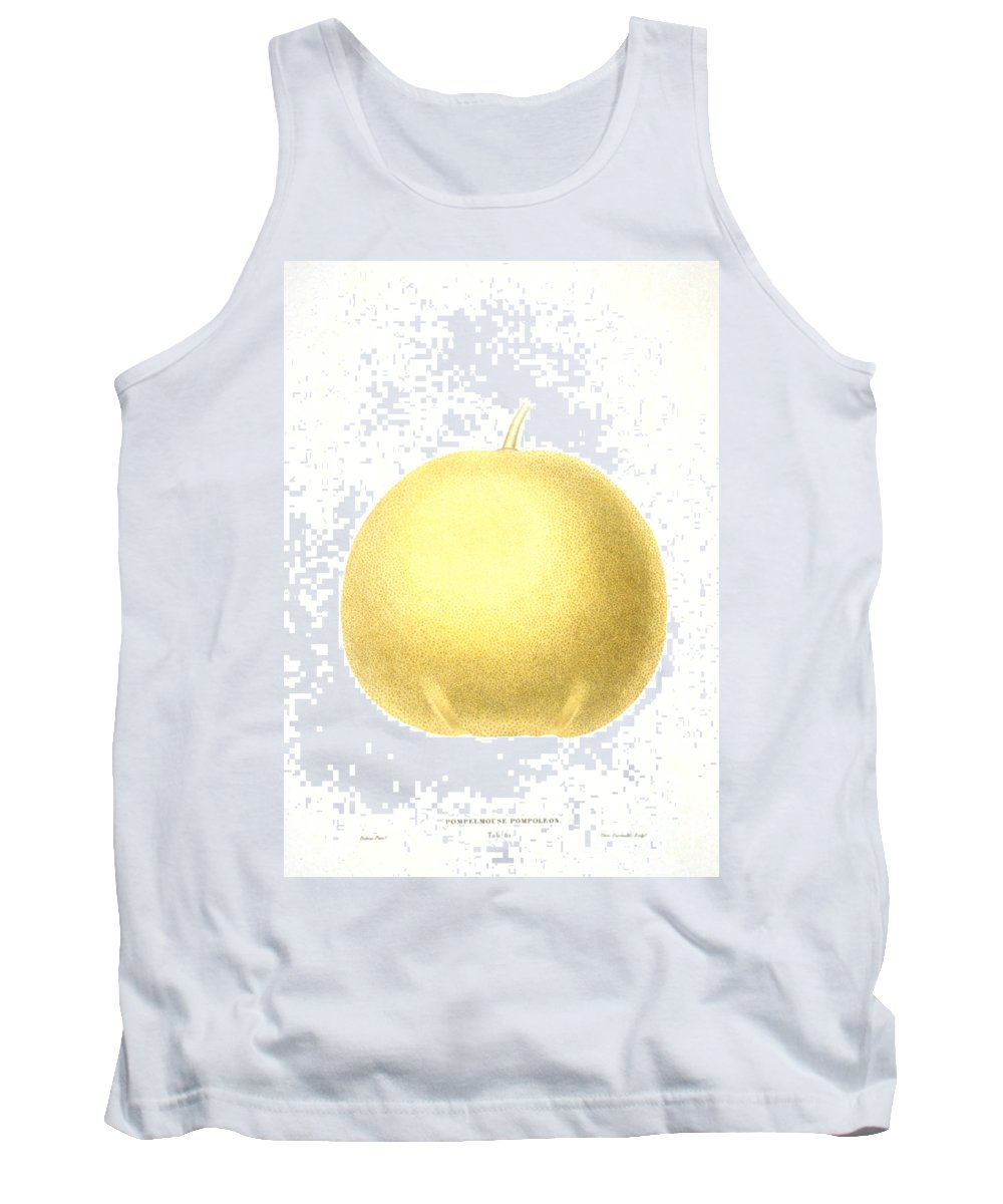 1822 Tank Top featuring the photograph Grapefruit by Granger