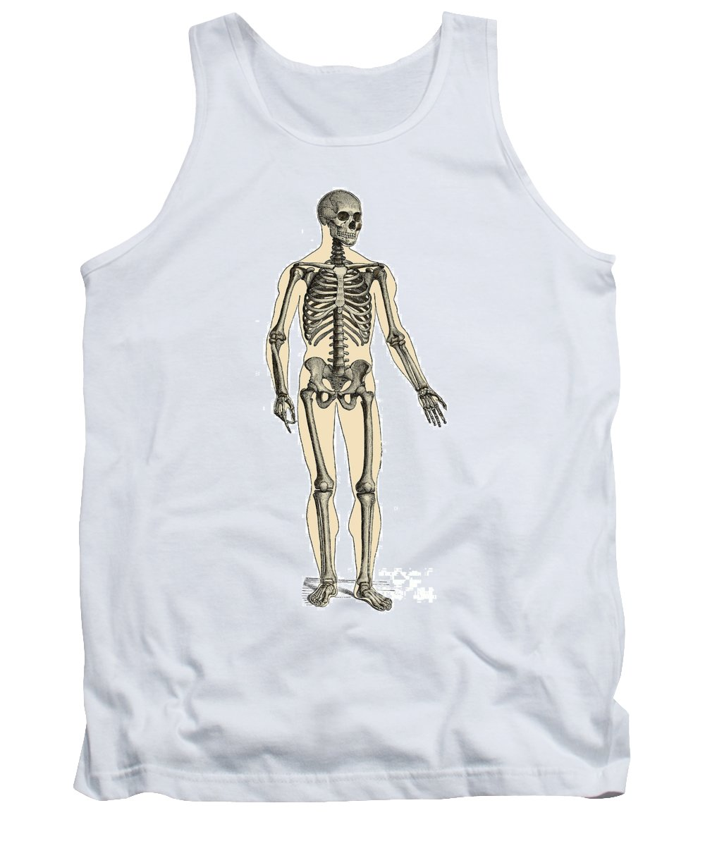 Human Tank Top featuring the photograph Human Skeleton by Science Source