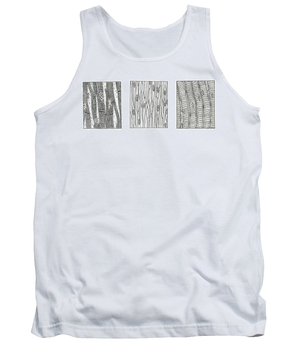 Anatomy Tank Top featuring the photograph Illustration Of Muscle Types by Science Source