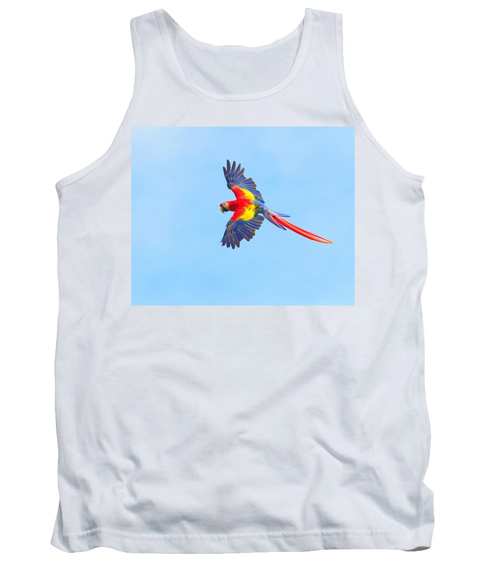 Scarlet Macaw Tank Top featuring the photograph Into The Blue by Tony Beck