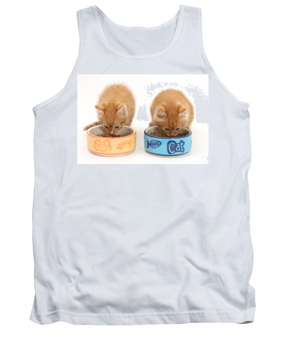 Animal Tank Top featuring the photograph Kittens Eating by Mark Taylor