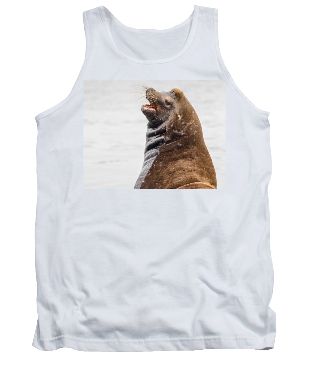 Sea Lion Tank Top featuring the photograph Laughing Sea Lion by Greg Nyquist
