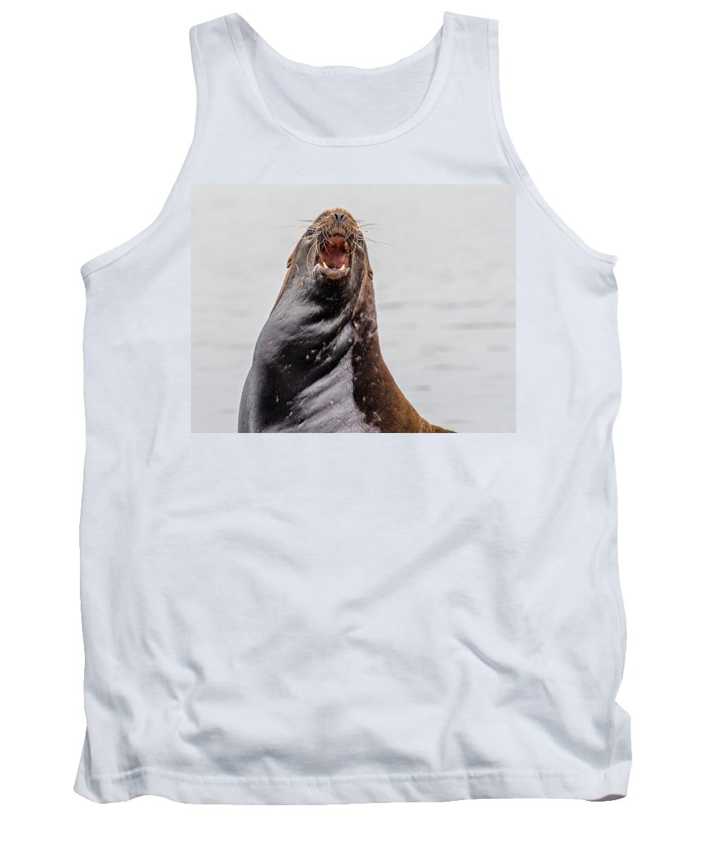Sea Lion Tank Top featuring the photograph Mad As Hell by Greg Nyquist