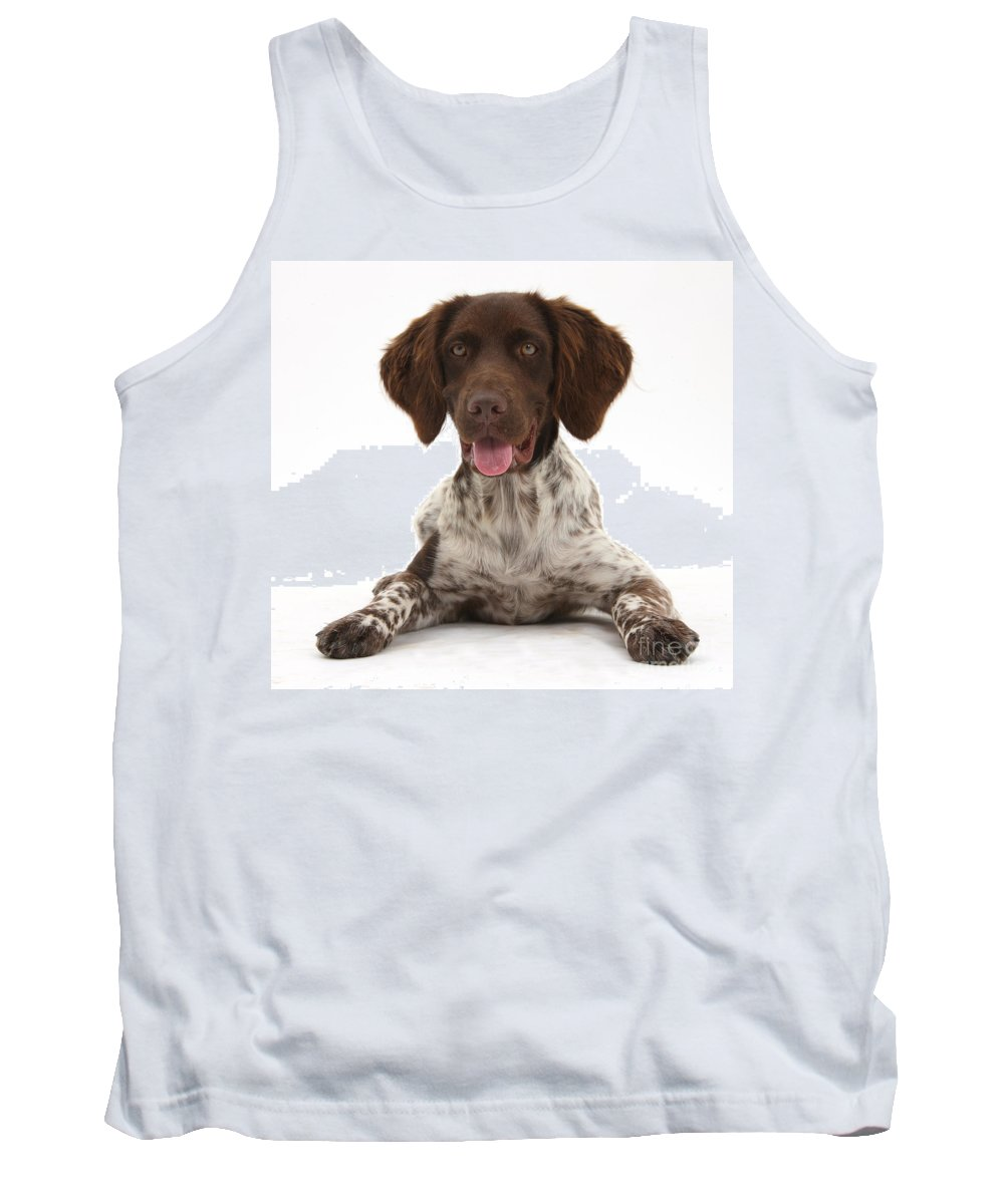 Nature Tank Top featuring the photograph Munsterlander by Mark Taylor
