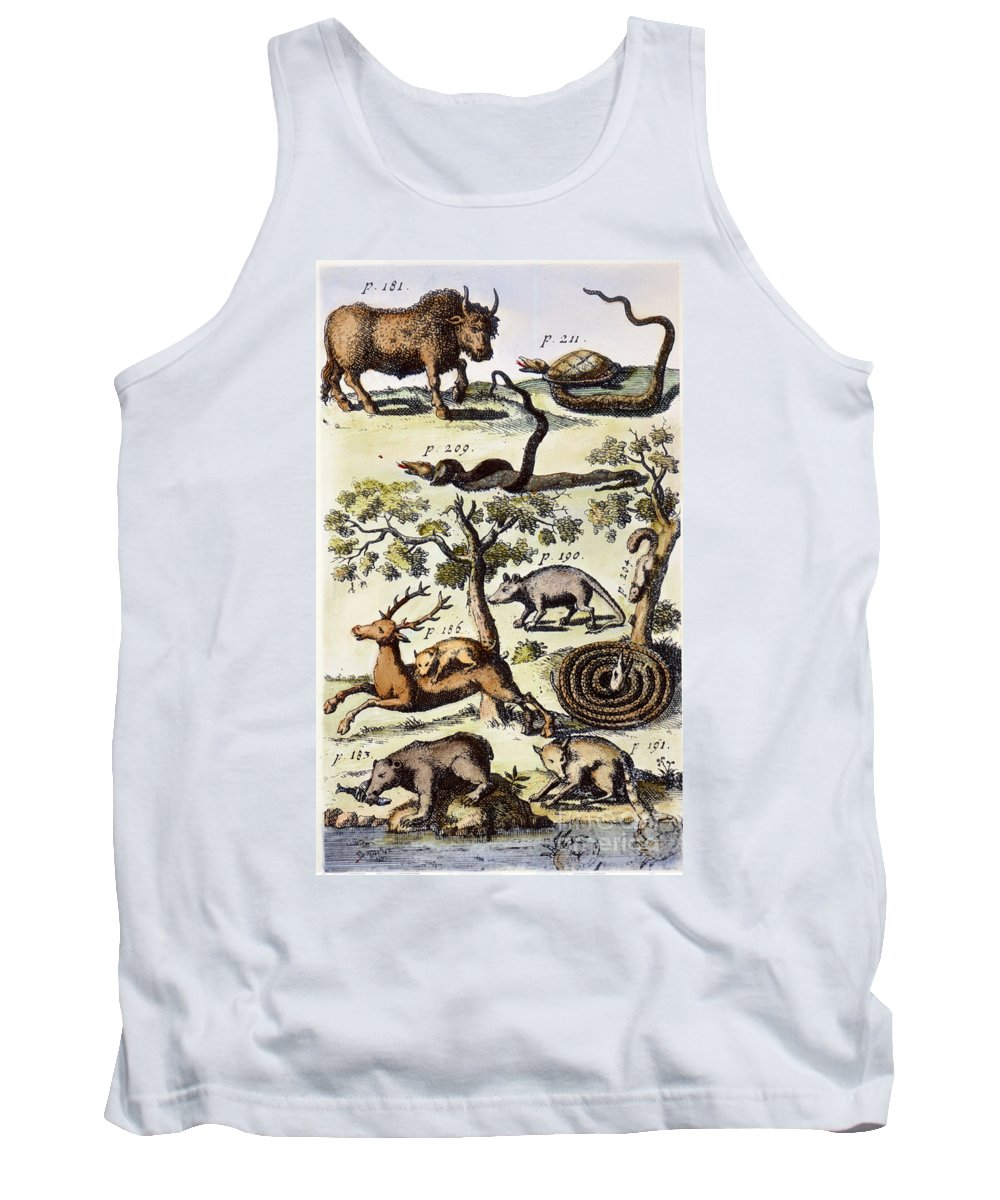1711 Tank Top featuring the photograph North America: Fauna by Granger