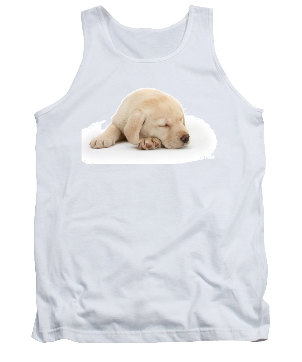 Animal Tank Top featuring the photograph Sleepy Labrador Pup by Mark Taylor