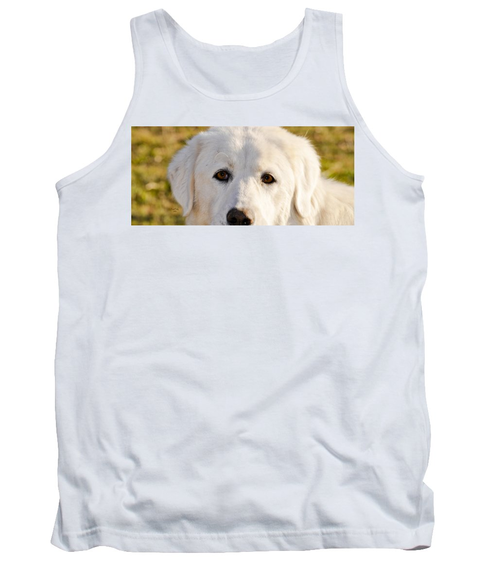 Dog Tank Top featuring the photograph Sweetie In The Boonies by Trish Tritz