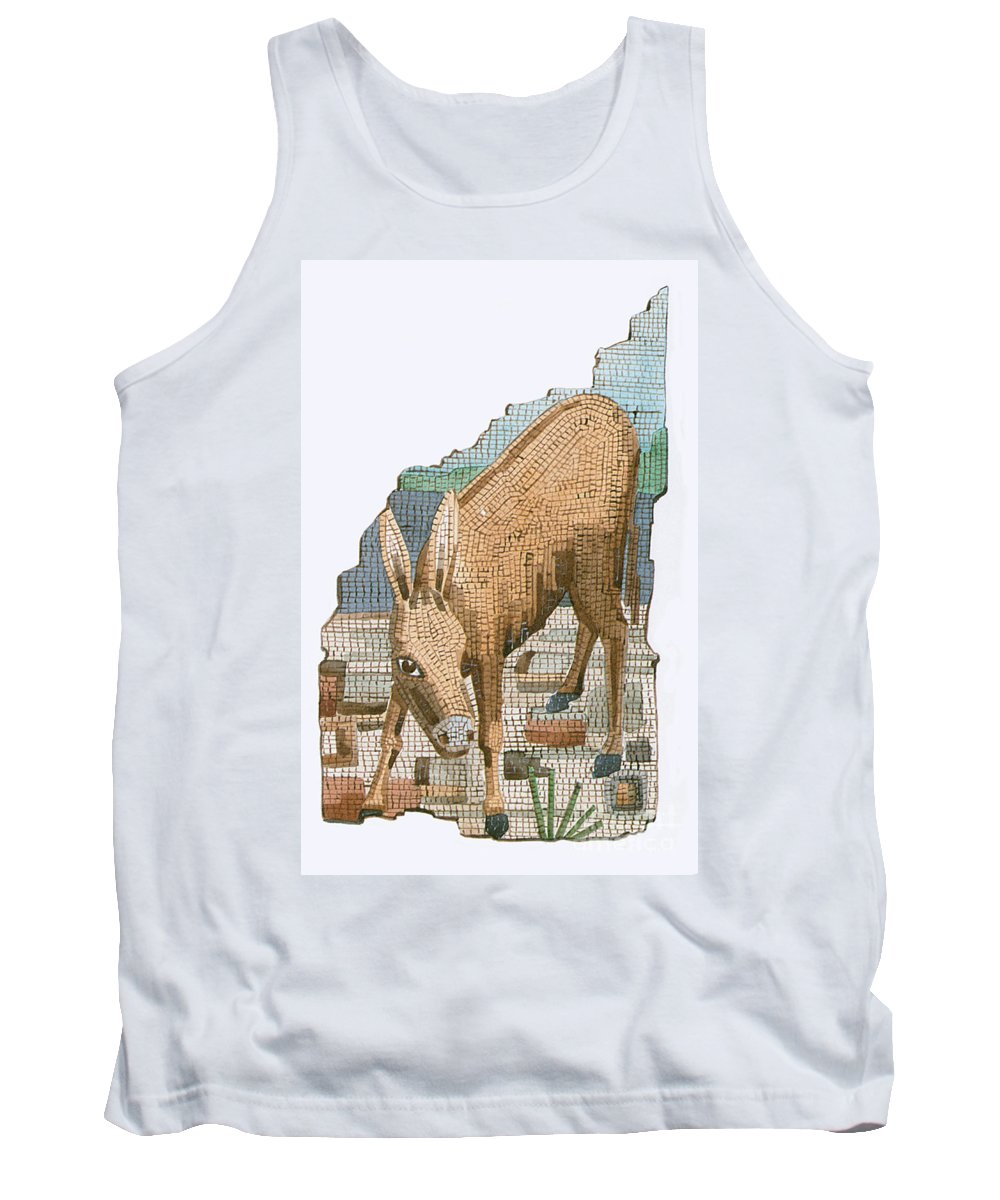 History Tank Top featuring the photograph The Golden Ass by Photo Researchers