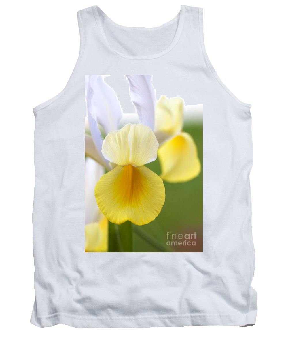 Yellow Iris Tank Top featuring the photograph Yellow Iris by Brooke Roby
