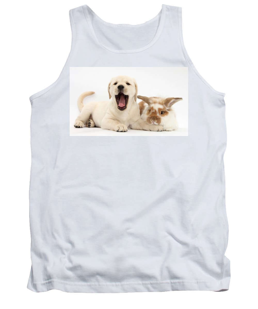 Nature Tank Top featuring the photograph Yellow Lab Puppy With Rabbit by Mark Taylor