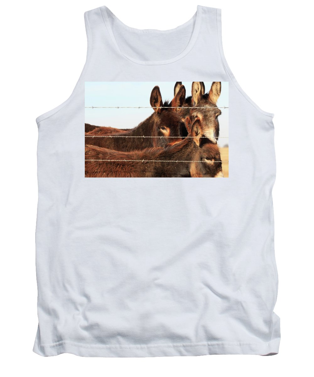 Animal Tank Top featuring the photograph Gathering by The Bohemian Lens LLC