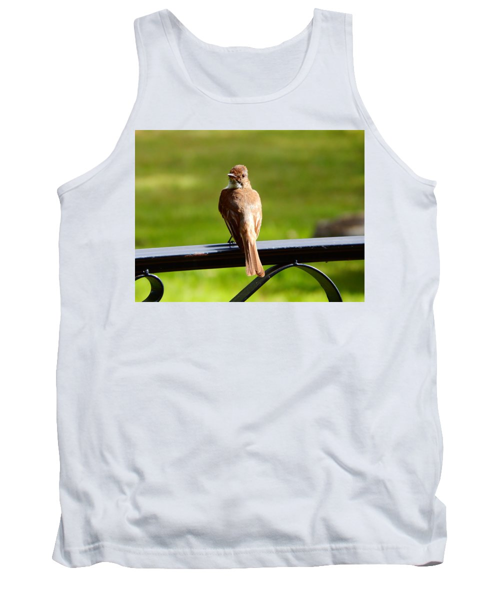 Good Tank Top featuring the photograph Good Morning by Virginia Kay White