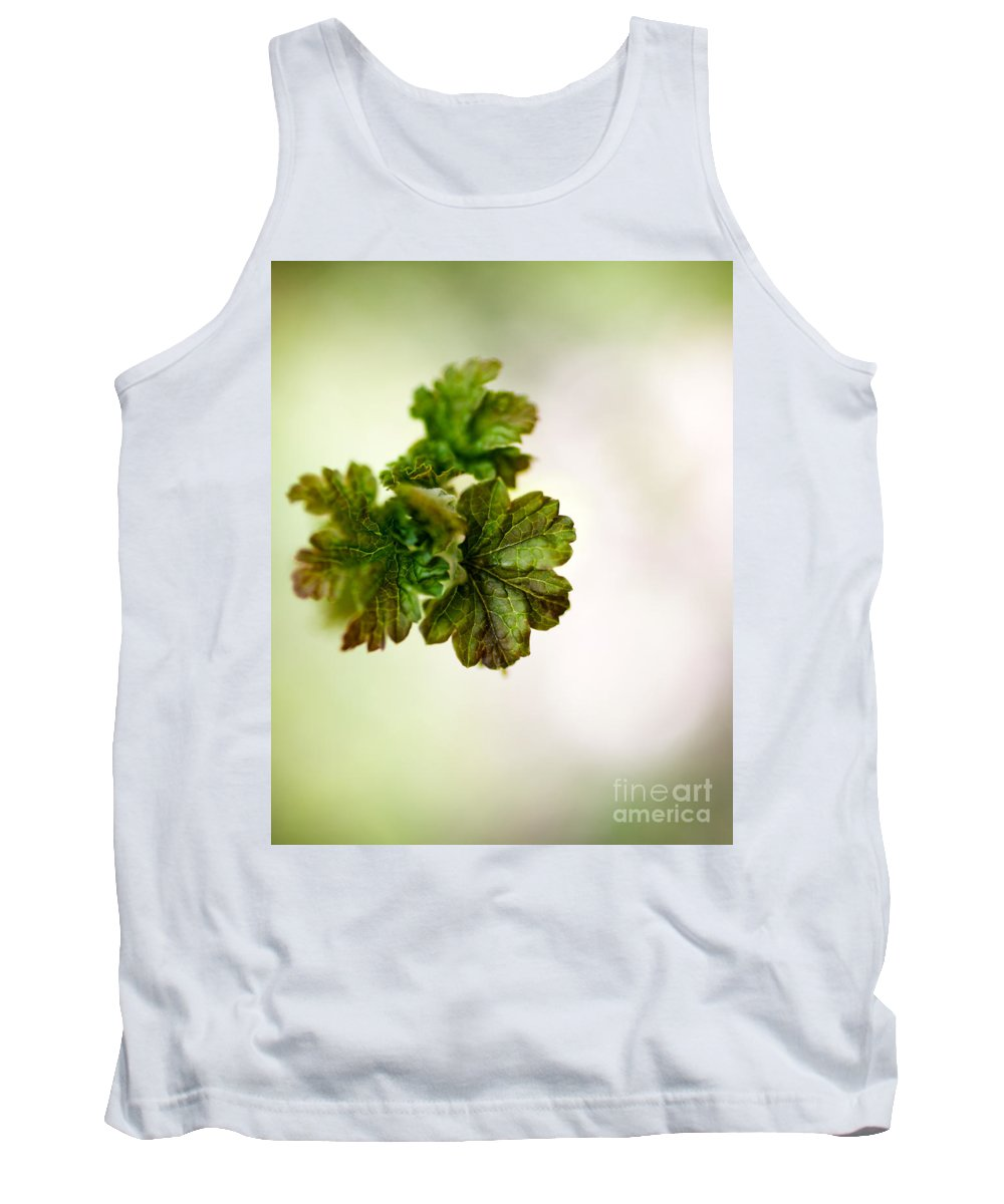 Green Tank Top featuring the photograph Growing Red Currant by Kati Finell