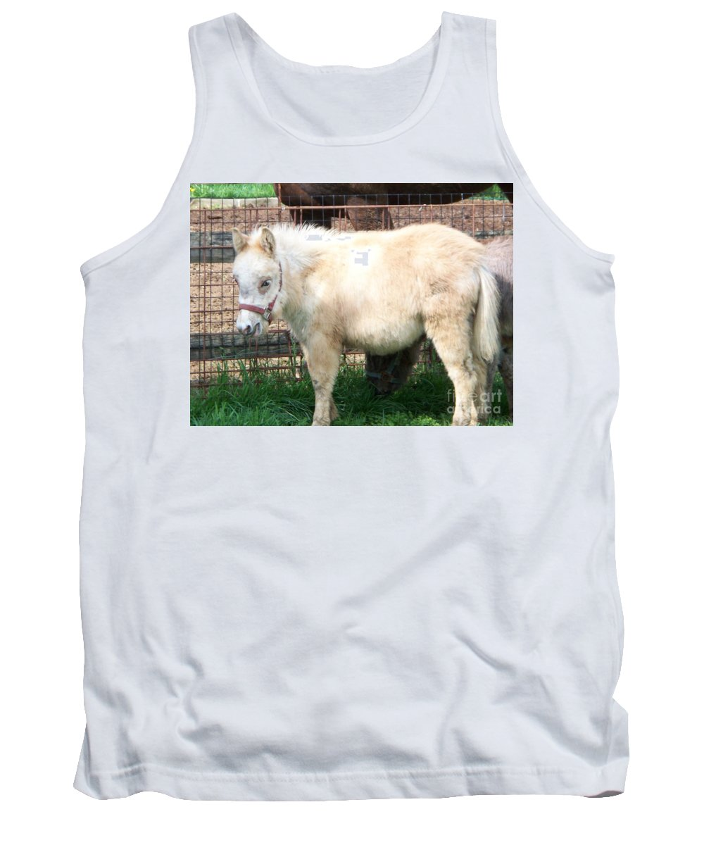 Miniature Horse Tank Top featuring the painting Miniature Horse by Eric Schiabor