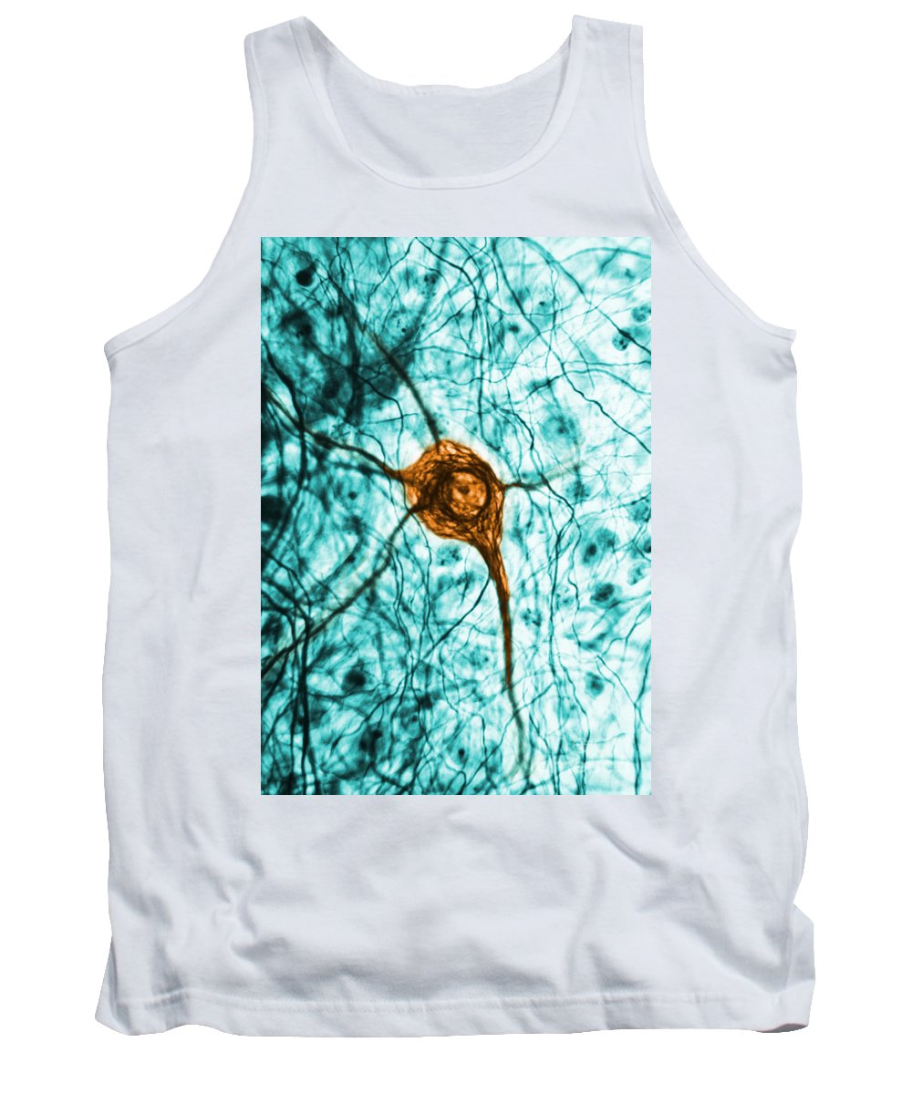 Cell Tank Top featuring the photograph Neuron, Tem by Science Source