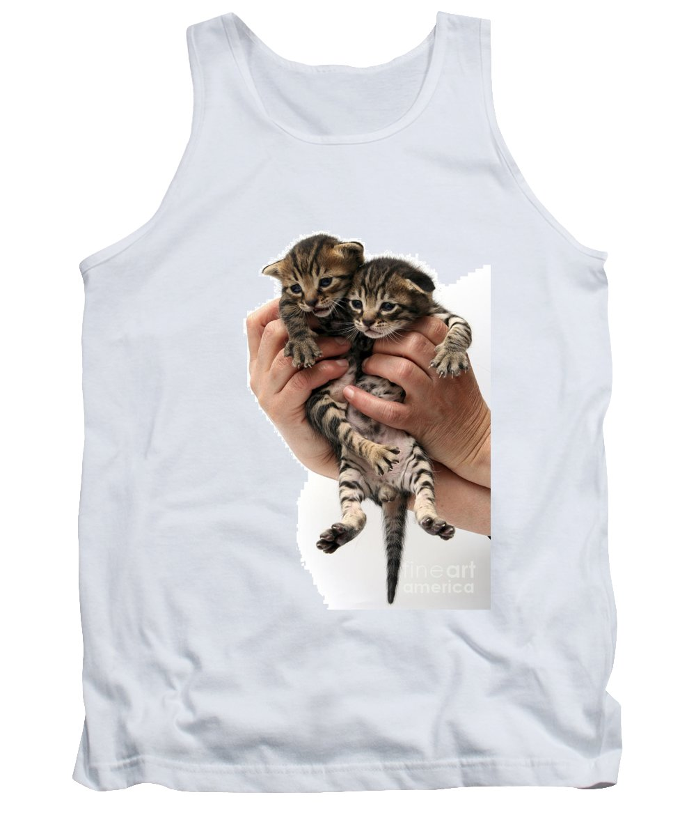 Cat Tank Top featuring the photograph One Week Old Kittens by Yedidya yos mizrachi