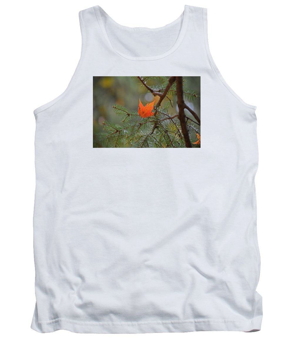 Fall Foliage Tank Top featuring the photograph Pining Away by Maria Keady