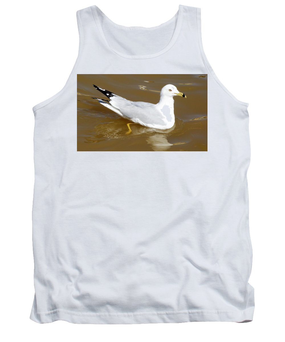 Seagull Tank Top featuring the photograph Seagull by Anthony Schafer