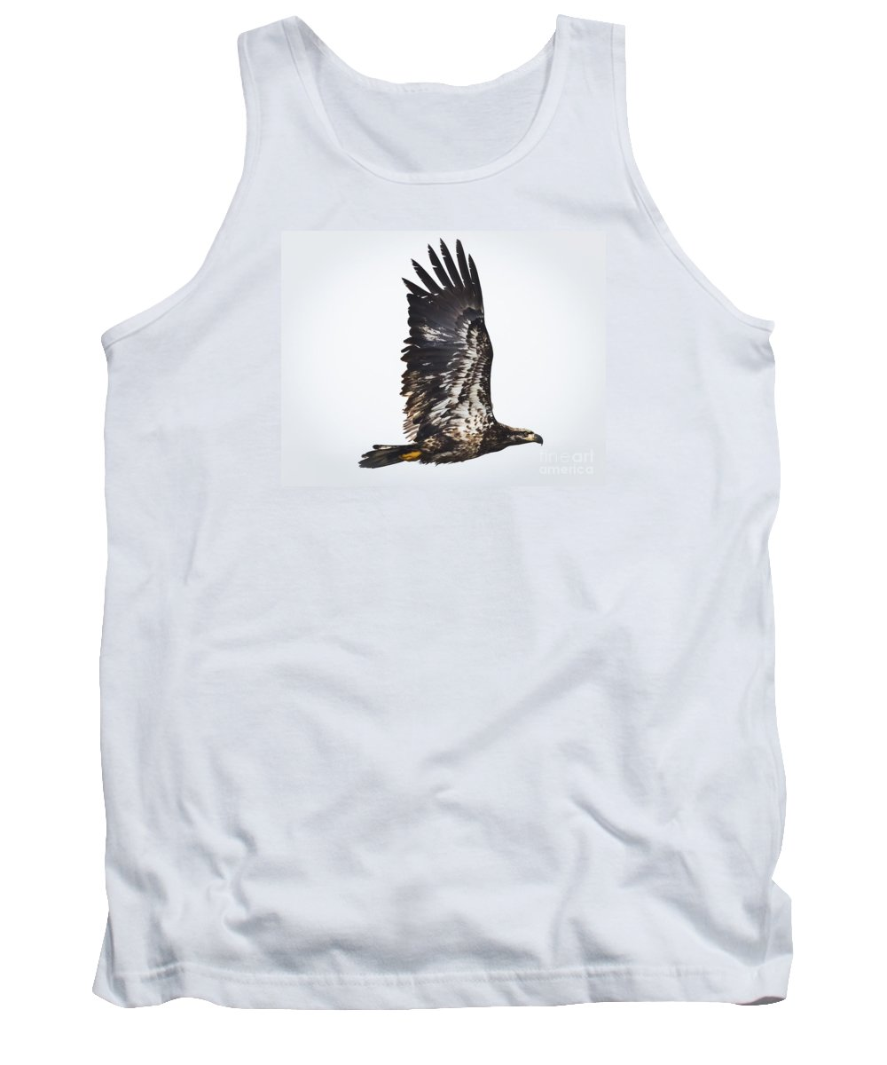 Canon Tank Top featuring the photograph Juvenile Bald Eagle by Ricky L Jones