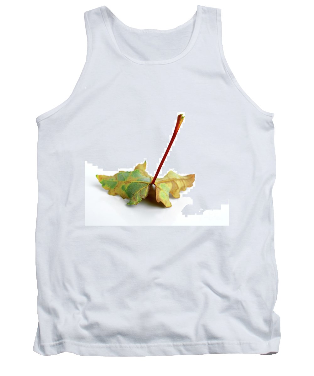 Autumn Tank Top featuring the photograph Leaf by Bernard Jaubert