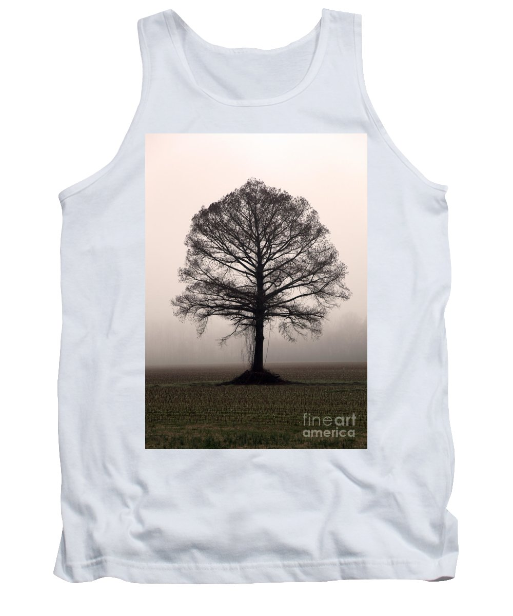 Trees Tank Top featuring the photograph The Tree by Amanda Barcon