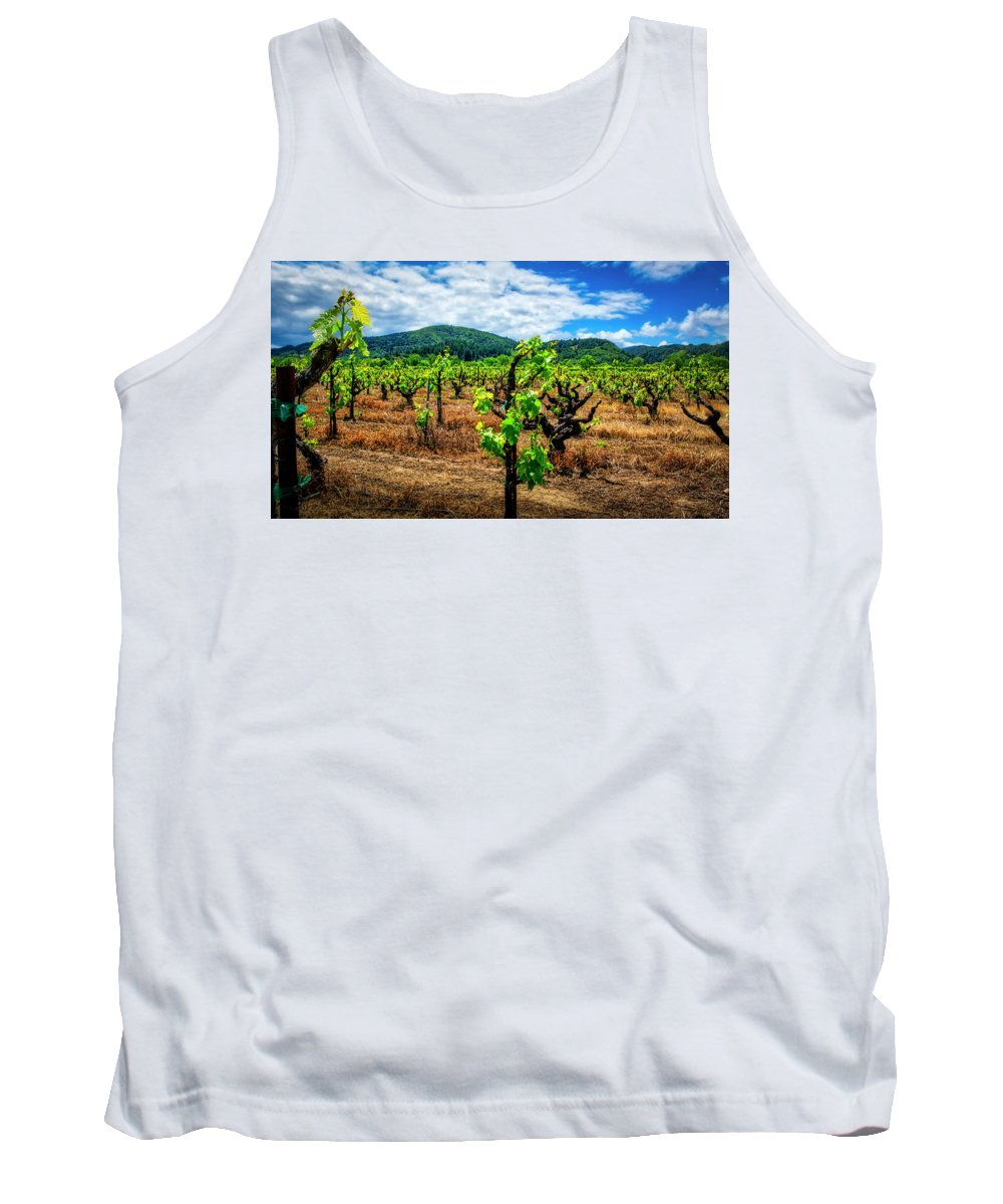 David Coffaro Vineyard & Winery Tank Top featuring the photograph 2638- Coffaro Vineyard by David Lange