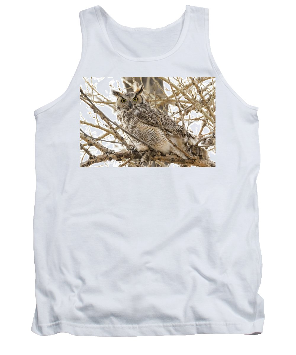 Owl Tank Top featuring the photograph A Great Horned Owl's Wide Eyes by Tony Hake