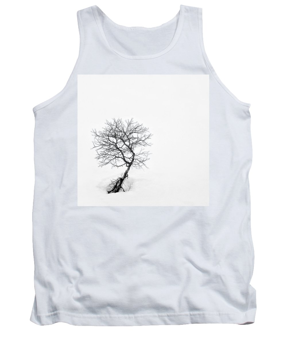 One Tree Tank Top featuring the photograph A Simple Tree by Dave Bowman