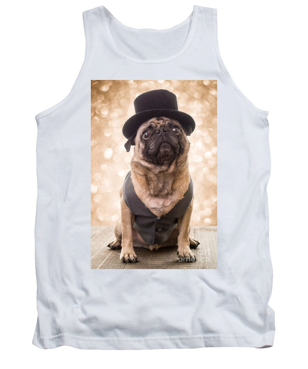 Pug Tank Top featuring the photograph A Star Is Born - Dog Groom by Edward Fielding
