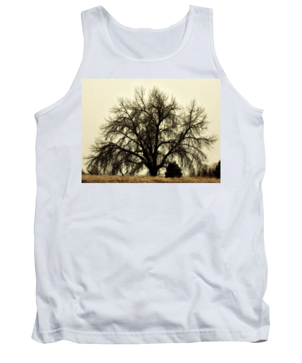 Tree Tank Top featuring the photograph A Winter's Day by Marilyn Hunt