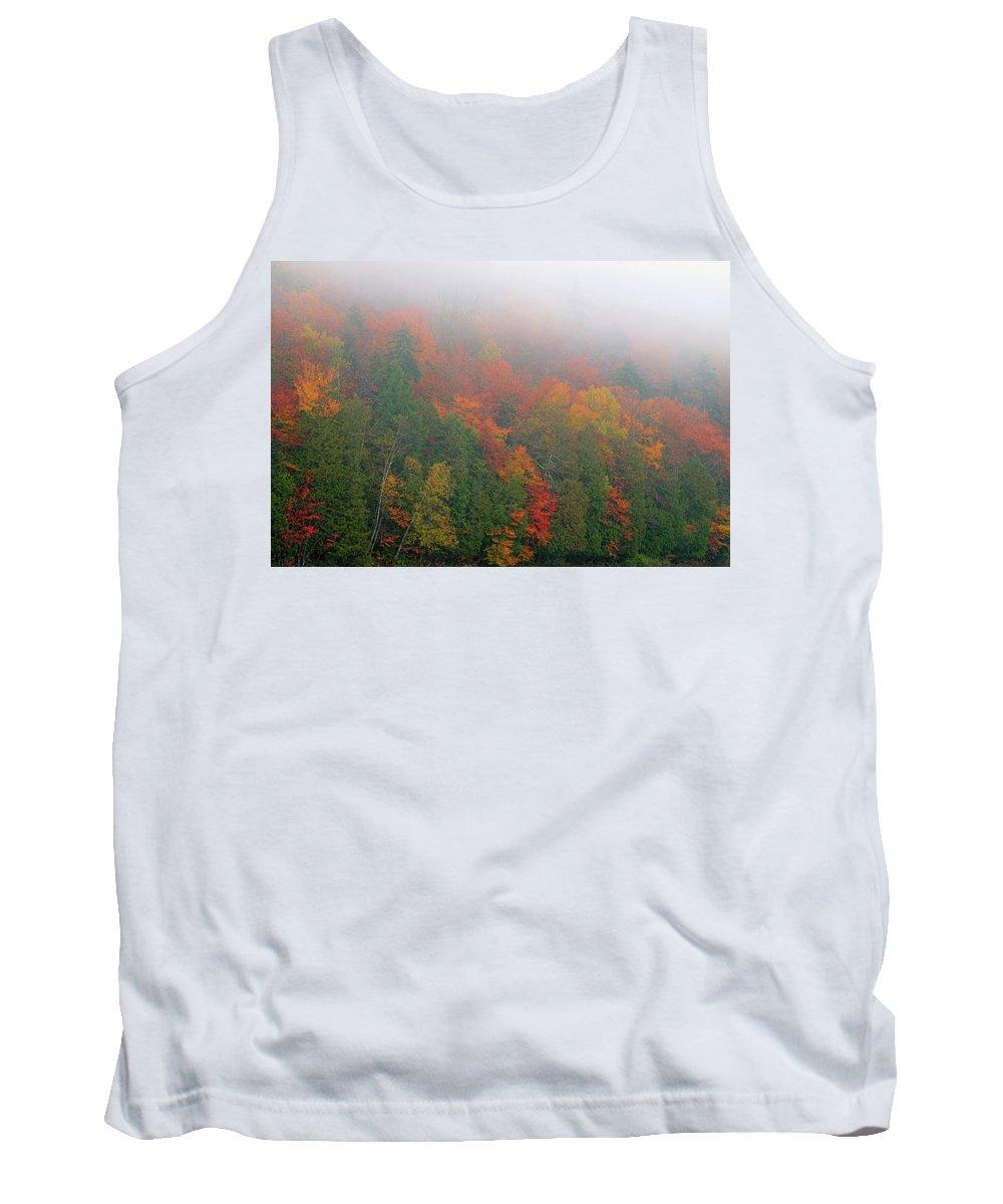 Adirondack Tank Top featuring the photograph Adirondack Autumn Colors by Tony Beaver