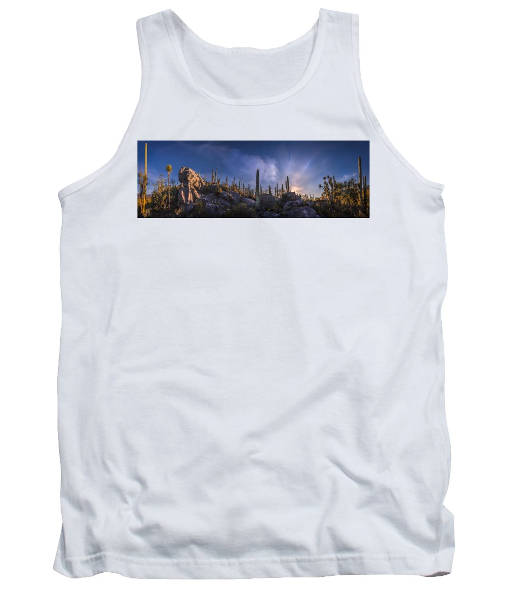 Fine Art Photography Tank Top featuring the photograph Afternoon Desert Scene by Luis Lyons