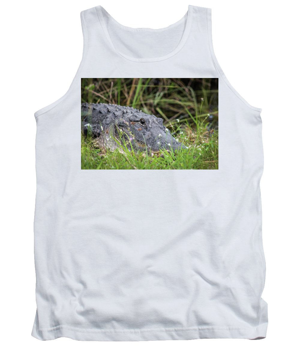 Daytime Tank Top featuring the photograph American Alligator by Scott Dry