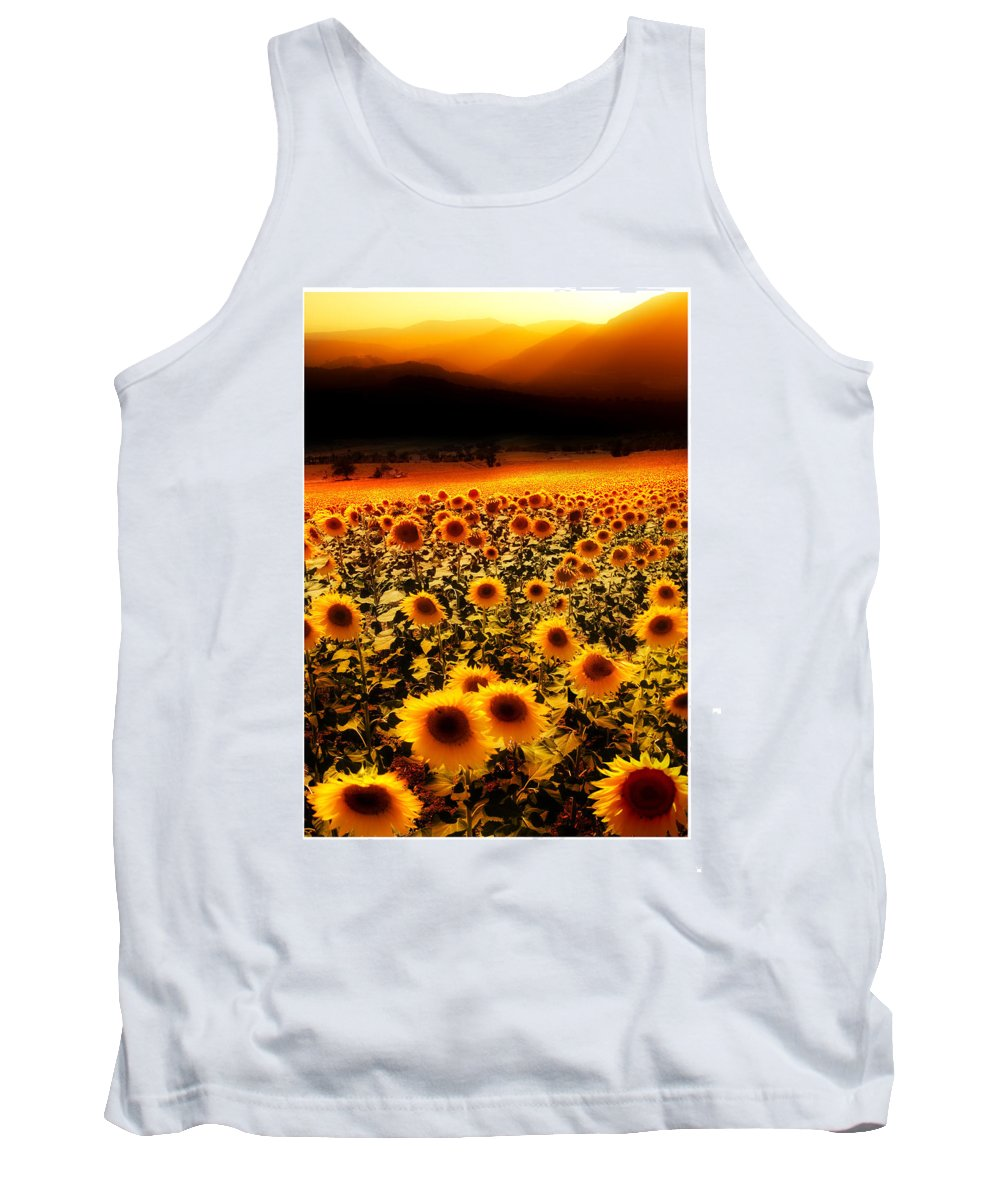 Sunflowers Tank Top featuring the photograph Andalucian Suns by Mal Bray