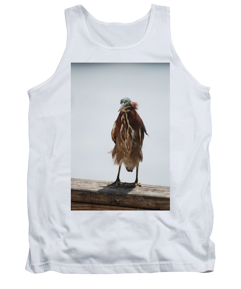 Birds Tank Top featuring the photograph Angry Bird by Rob Hans