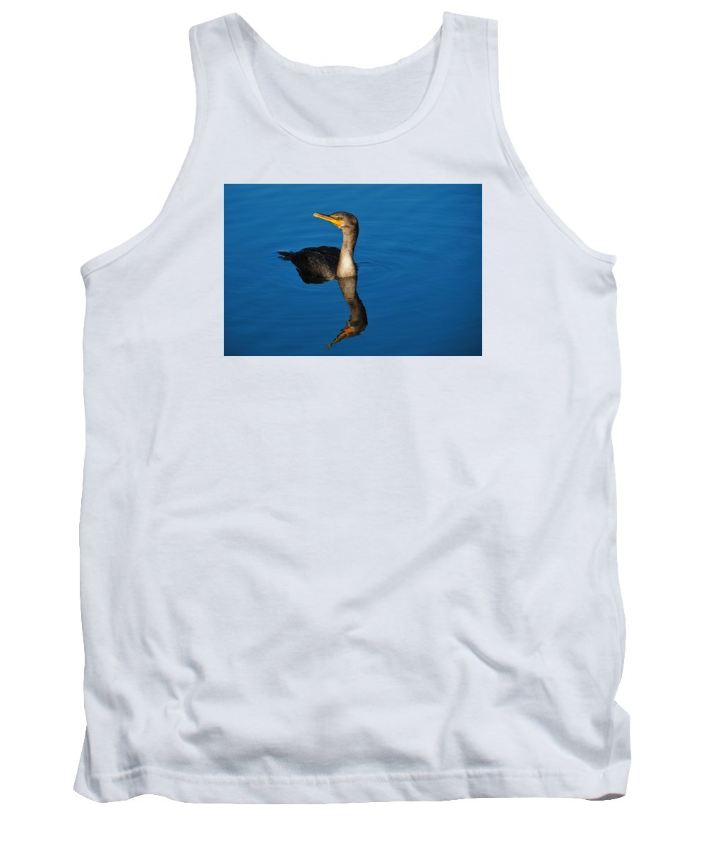 Animals Fauna Birds Feathers Tank Top featuring the photograph Anhinga II by LOsorio Photography