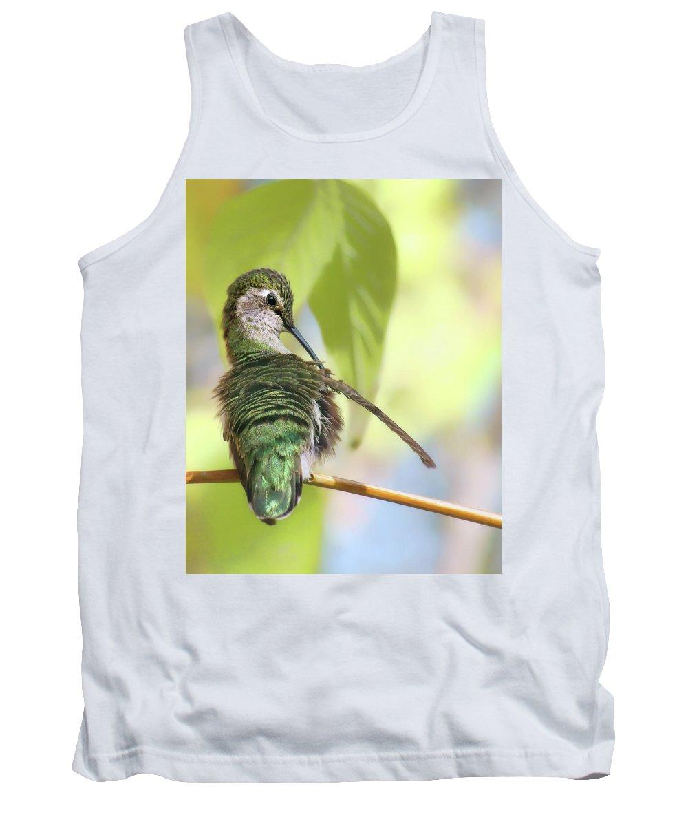 Annas Hummingbird Tank Top featuring the photograph Anna's Hummingbird - Preening by Nikolyn McDonald
