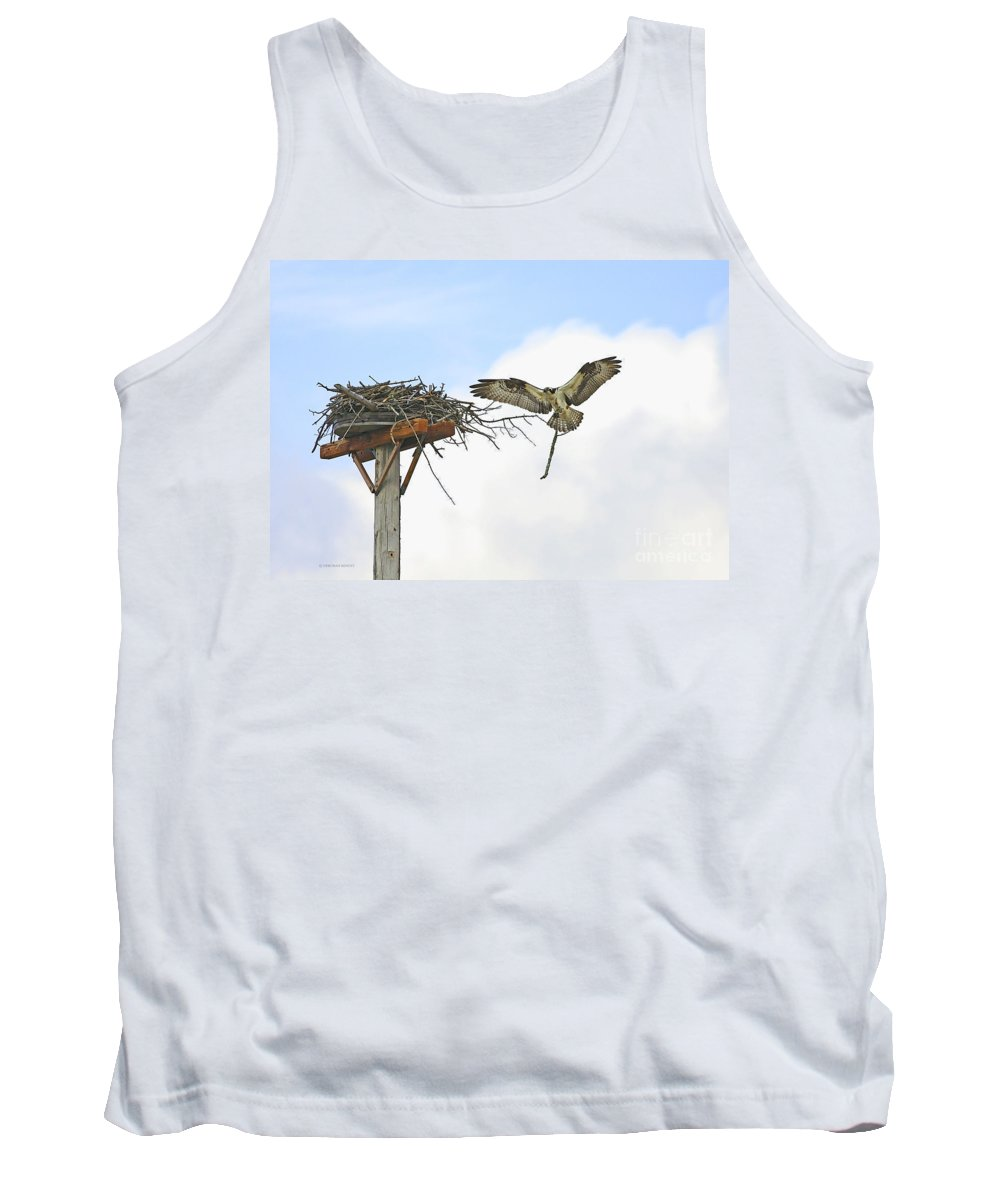 Osprey Tank Top featuring the photograph Another Twig For The Nest by Deborah Benoit