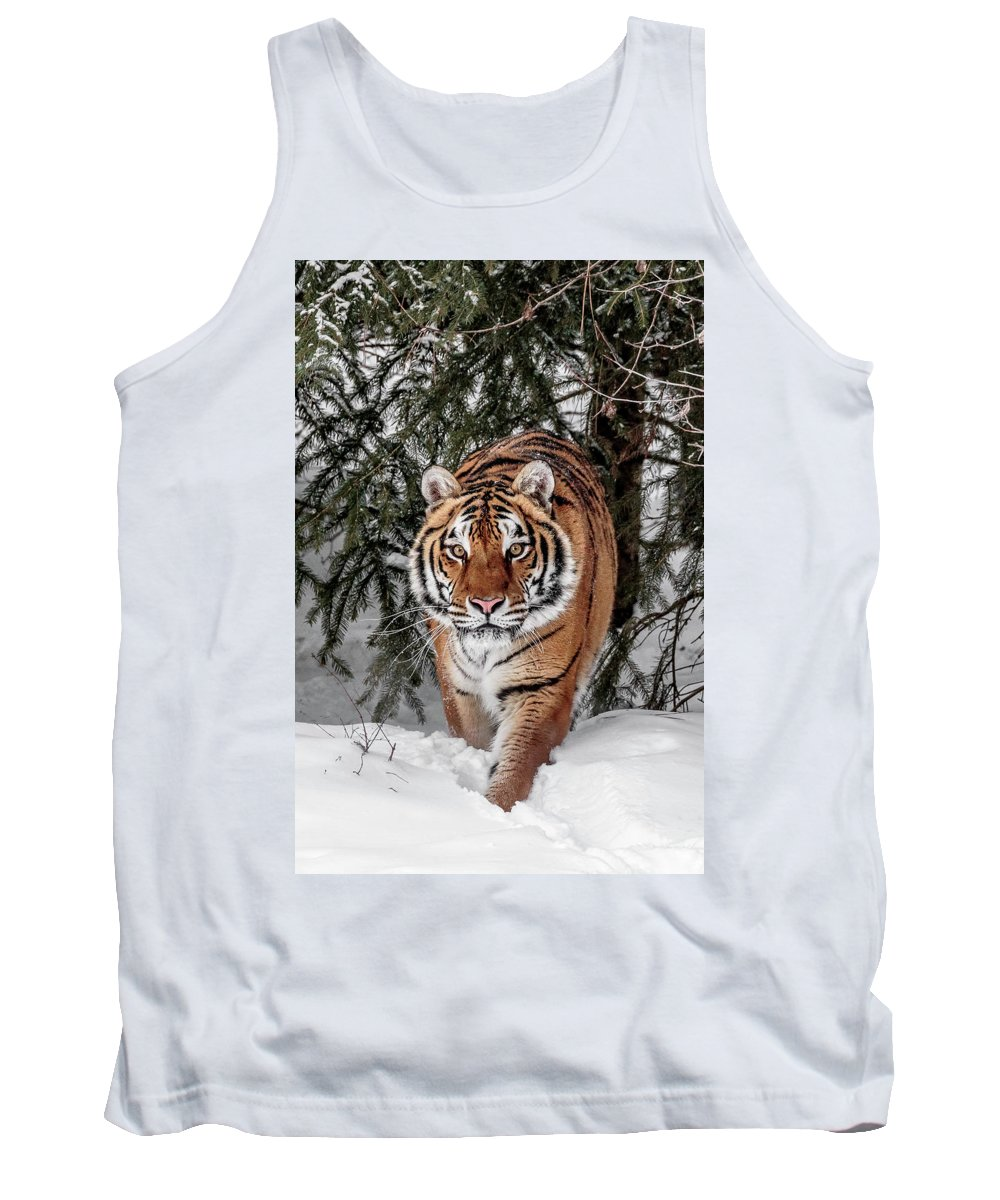 Approaching Tiger Tank Top featuring the photograph Approaching Tiger by Wes and Dotty Weber